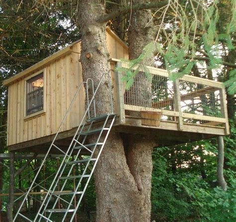 tree fort tree forts