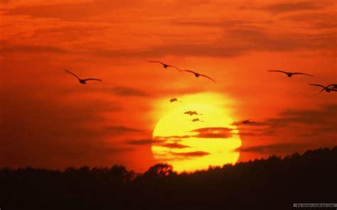 Landscape Sunset Sunset Sky Sunset Landscape Sunset Photos Vol 3