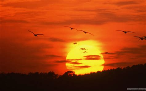 Landscape Pictures Of Sunset Sunset Sky Sunset Landscape Sunset Photos Vol 3