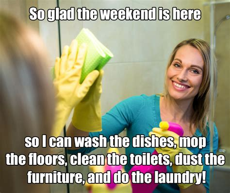Clean Memes - these 6 cleaning memes will brighten your day the maids blog
