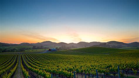 Photo Napa Valley by Napa Valley Pictures View Photos Images Of Napa Valley