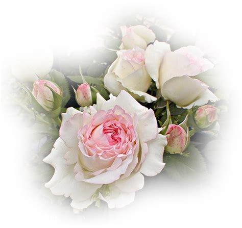 Brigita Pink Syari szeretettel sayuri blogja bendur istv 225 n c 243 km 243 kus