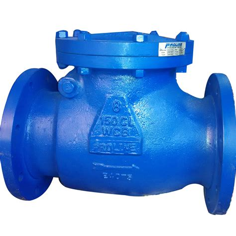 swing check valve swing check valves in chennai mumbai bangalore hyderabad