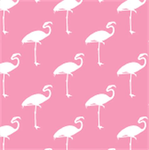 flamingo mobile wallpaper flamingo wallpapers images photos pictures backgrounds