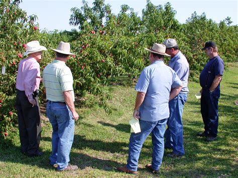 fruits n such orchard fruit orchard and garden tour on saturday may 20 the