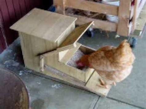 automatic chicken feeder youtube