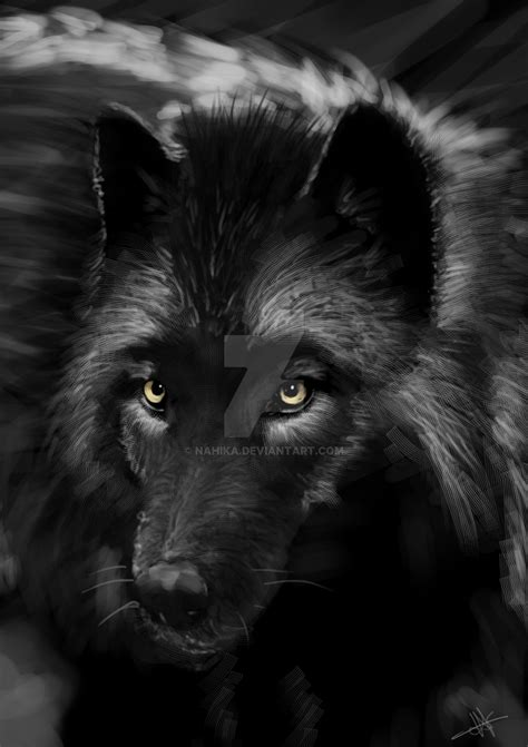Lop Noir black wolf by nahika on deviantart