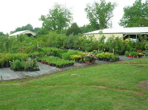 Aldridge Botanical Gardens 92 Best Images About Aldridge Gardens Pictures On Gardens Gerber Daisies And Rabbit