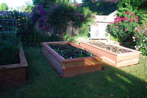 Building Vegetable Boxes For A Greek Garden California Vegetable Boxes For The Garden