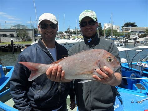 no licence fishing boat hire melbourne bluey s boathouse - Fishing Boat Hire Melbourne No License