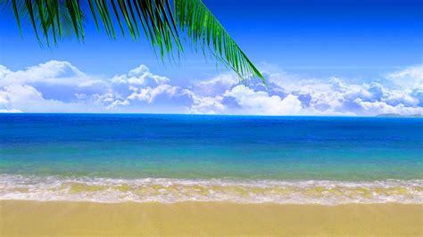 fondo pantalla playas taringa 1024x600 fondo pantalla orilla playa