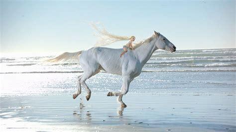 Kuda Pony Putih L mimpi menunggang kuda putih