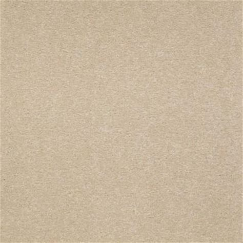 platinum plus enraptured ii color biscotti 12 ft carpet 0173d 58 12 the home depot
