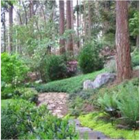 Landscape Edging Slope Slope Landscape Backyard Garden Design