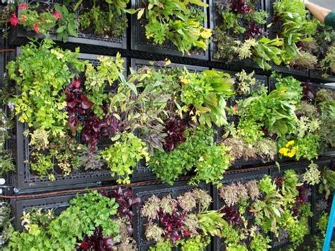 vertical edible garden gardens i love pinterest
