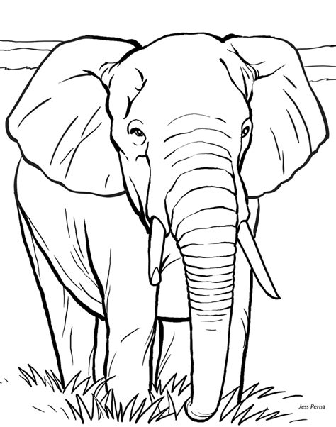 coloring page for elephant 14 elephant coloring pages for kids gt gt disney coloring pages