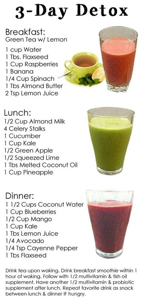 Vitamix Juice Recipes Detox by 3 Day Detox Vitamix Juicing