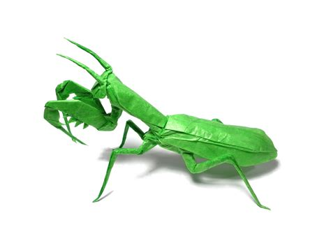 Origami Mantis - origami praying mantis image collections craft