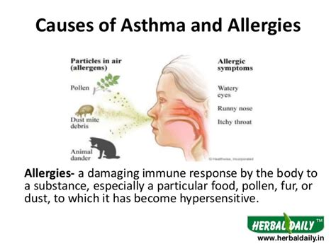 treatment for asthma allergy in iअस थम और