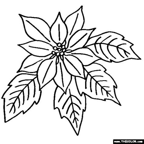 poinsettia flower coloring page color poinsettia