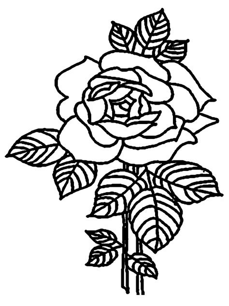 realistic rose coloring page rose coloring pages coloringsuite com