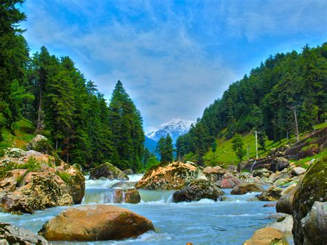 Kashmir Tour Packages, Book Kashmir Holiday Packages on