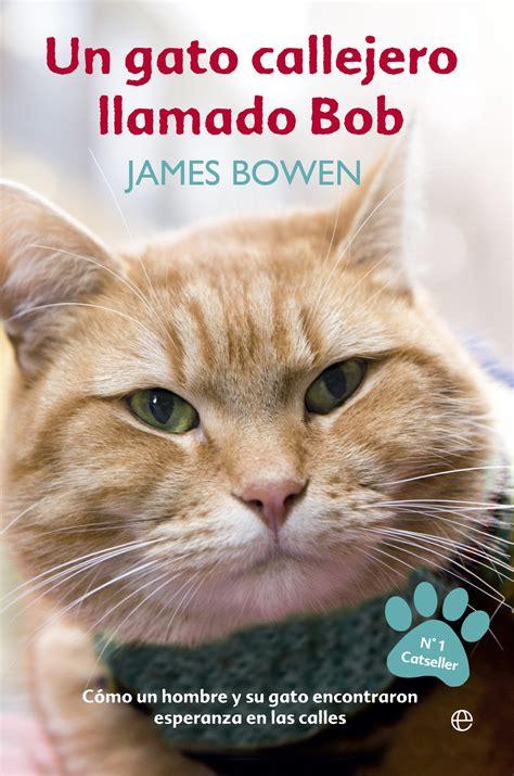libro una noche un gato mi rinc 243 n entre los libros rese 241 a un gato callejero llamado bob james bowen