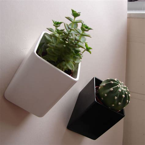 Wall Hanging Pots Wall Mounted Flower Pots The Wall By Thelermont