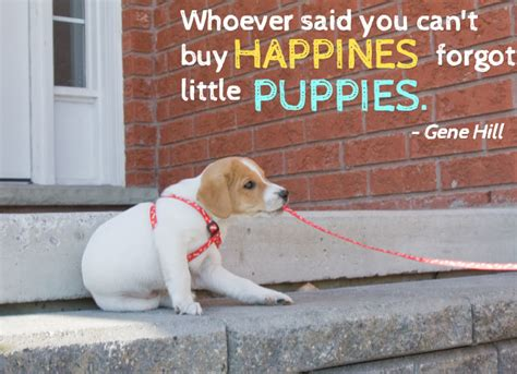 puppies quotes 25 quotes with pictures