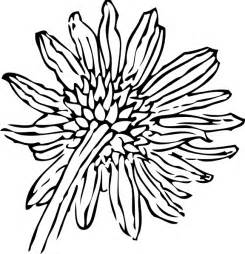 Sunflower Clip Outline by Back Of A Sunflower Outline Clip At Clker Vector Clip Royalty Free