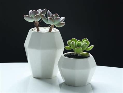 Decorating Flower Pot Modern Magazin 2017 Modern Bar Restaurant Flower Pots For Green Plants