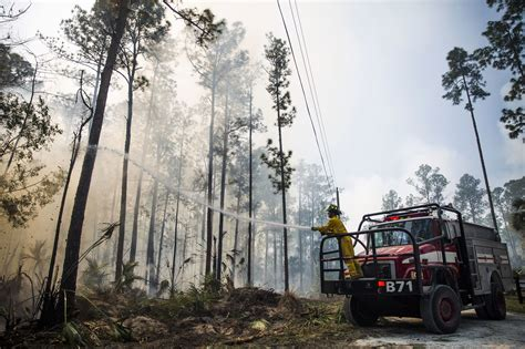 florida wildfires wildfires burn 126 000 acres across florida this year orlando sentinel