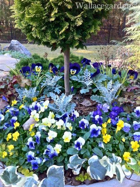 Pansy Garden Ideas Sensational Container Garden Designs