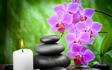 purple flowers black stone  candle light hd wallpapers rocks