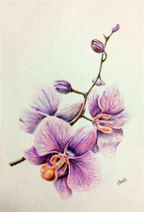 tatuaggi fiori orchidea pi 249 di 25 fantastiche idee su tatuaggi fiori orchidea su