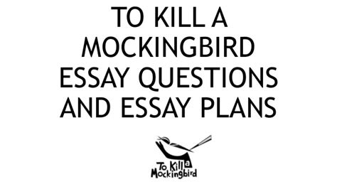 to kill a mockingbird themes essay introduction essay building blocks to kill a mockingbird themes