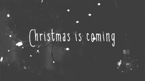 holiday lights animated gifs gif winter tree lights dreams magic season is coming
