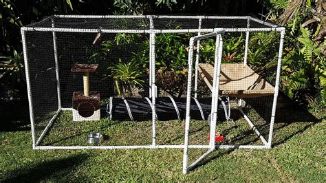 Cost To Fence Backyard Build Your Own Cat Pet Enclosure Today