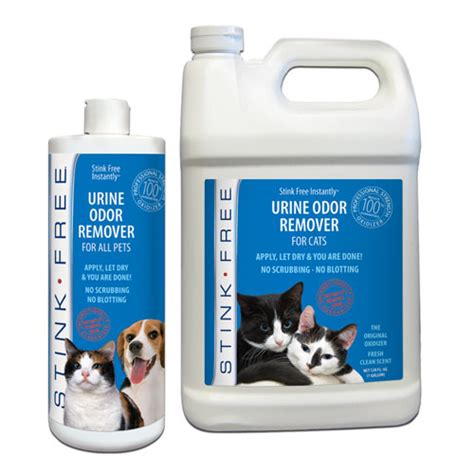 how to remove urine smell remove pet odors like cat 28 images how to remove pet urine odors ms