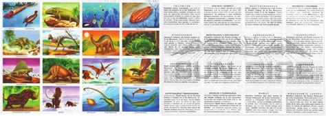 sistema de mam 237 feros depredadores aislado sobre blanco caracter sticas de los animales monografias pack de