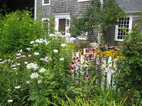 cottage gardens watercolors by liana yarckin cottage gardens