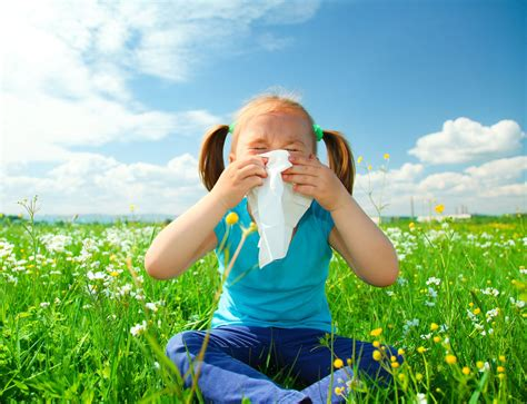 how to help allergies allergies prevention clinics