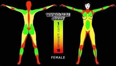 female tattoo pain chart tattoos pinterest uxui