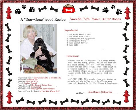 puppy treat recipes peanut butter biscuit recipes about treats