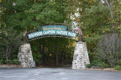 Dogwood Le Mo by Entrance Foto Di Dogwood Nature Park Le