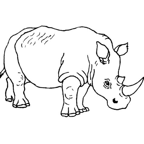 coloring pages of big animals free animal coloring pages rhino animal coloring sheets