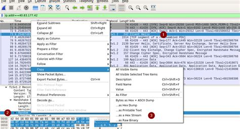 session hijacking tutorial using wireshark hijacking openssl renegotiated keys for server wiretaps