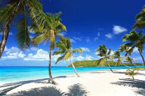 Search And Tobago Buy Airline Tickets To And Tobago Cheap International Flights To