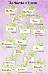 Primroses Flower - 1000 images about meaning of flowers on pinterest