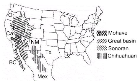 map usa deserts approximate boundaries of the four deserts of